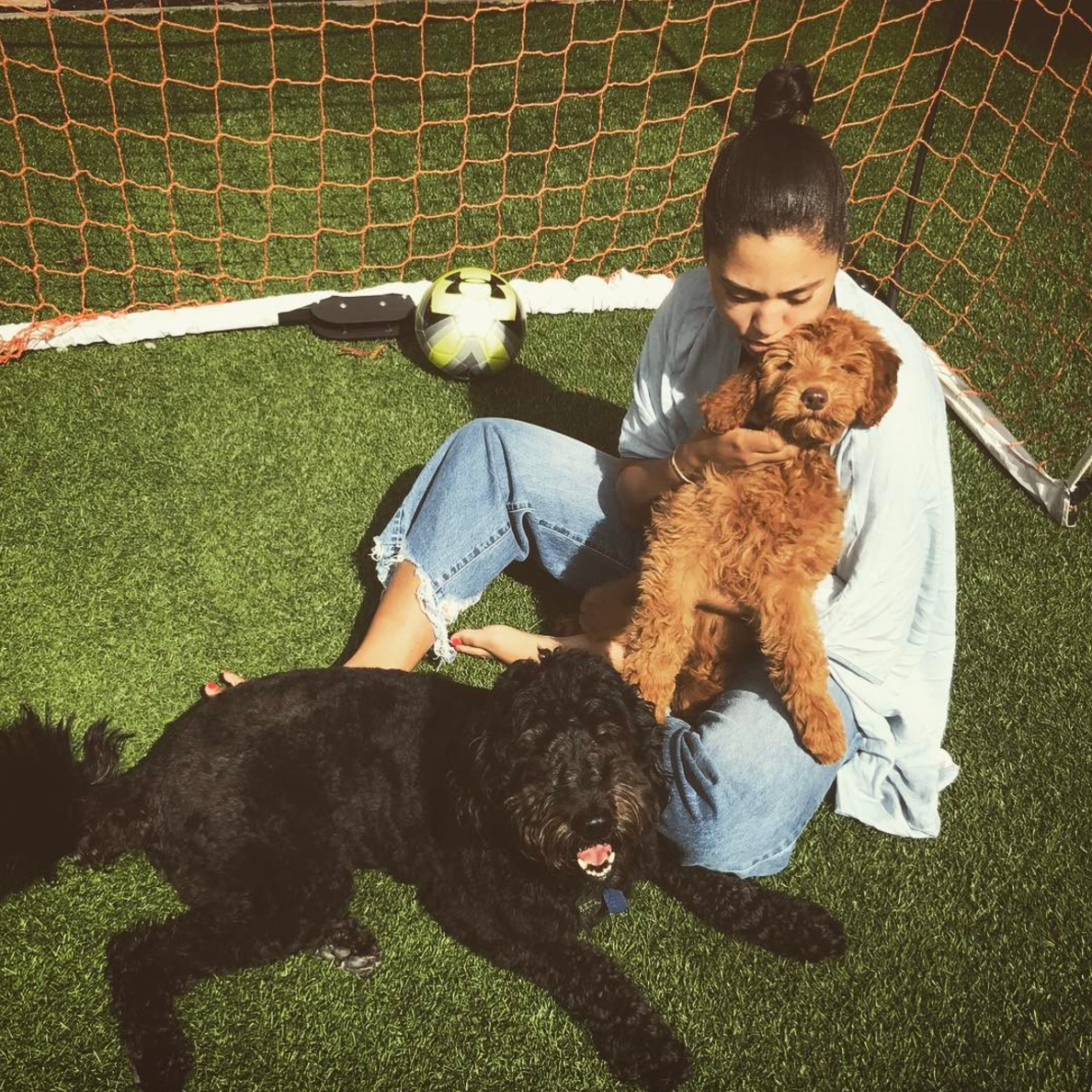 best loved cfbaa 1f839 Steph Curry got a new dog named Rookie, and he is a good dog