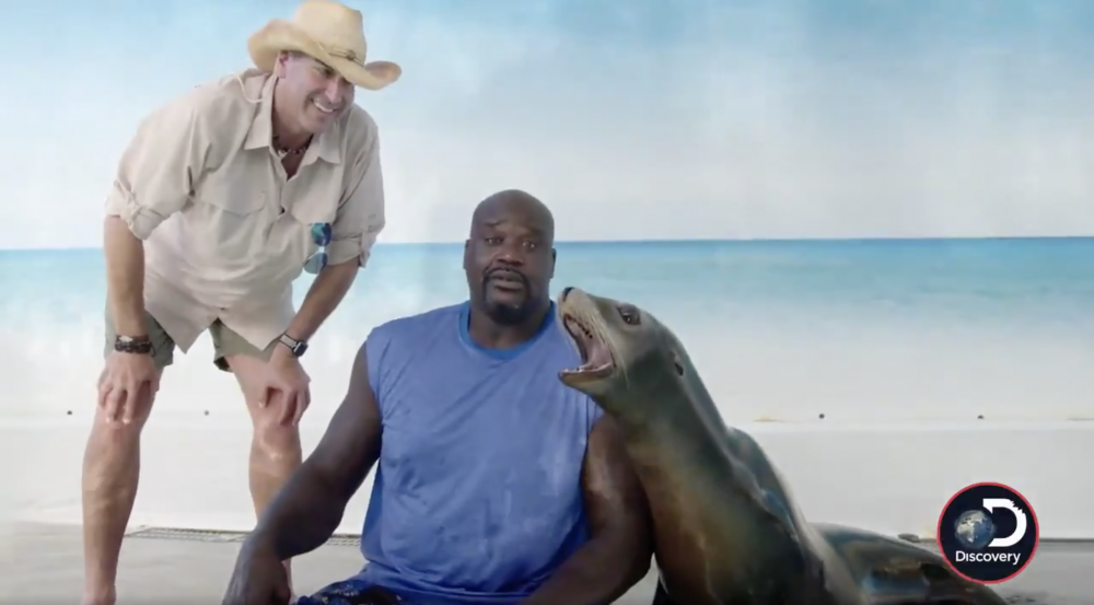 Shaquille O'Neal is hosting Shark Week on Discovery Channel